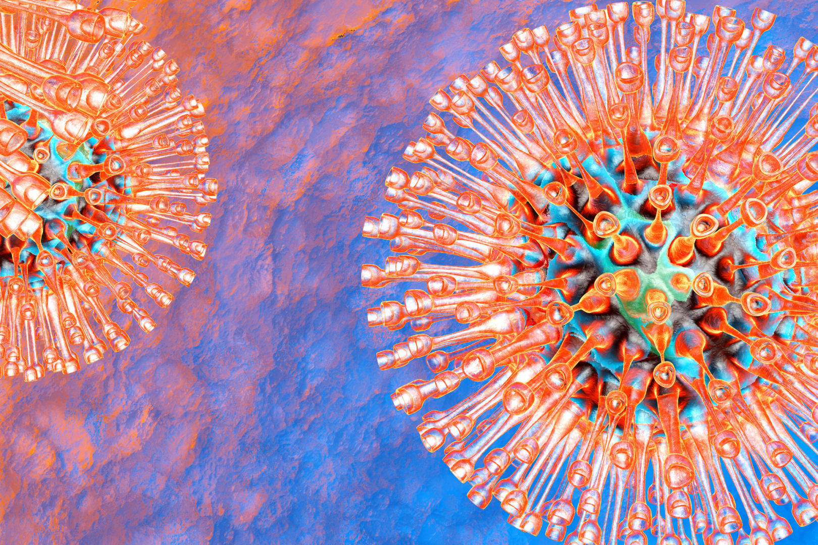 Virus herpes what a is Genital herpes