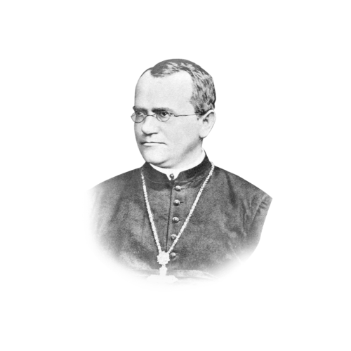 Gregor Johann Mendel was born on this day 198 years ago.
